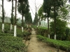 Zahrada Jungpana