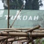 Aktuálně z Darjeelingu 2 -TUKDAH