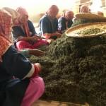 Aktuálně z Nepálu 2 – Jun Chiyabari