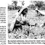 Tea price rise