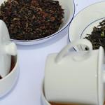 Tea cupping v Paralelní Polis