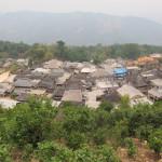 Jing Mai in Yunnan